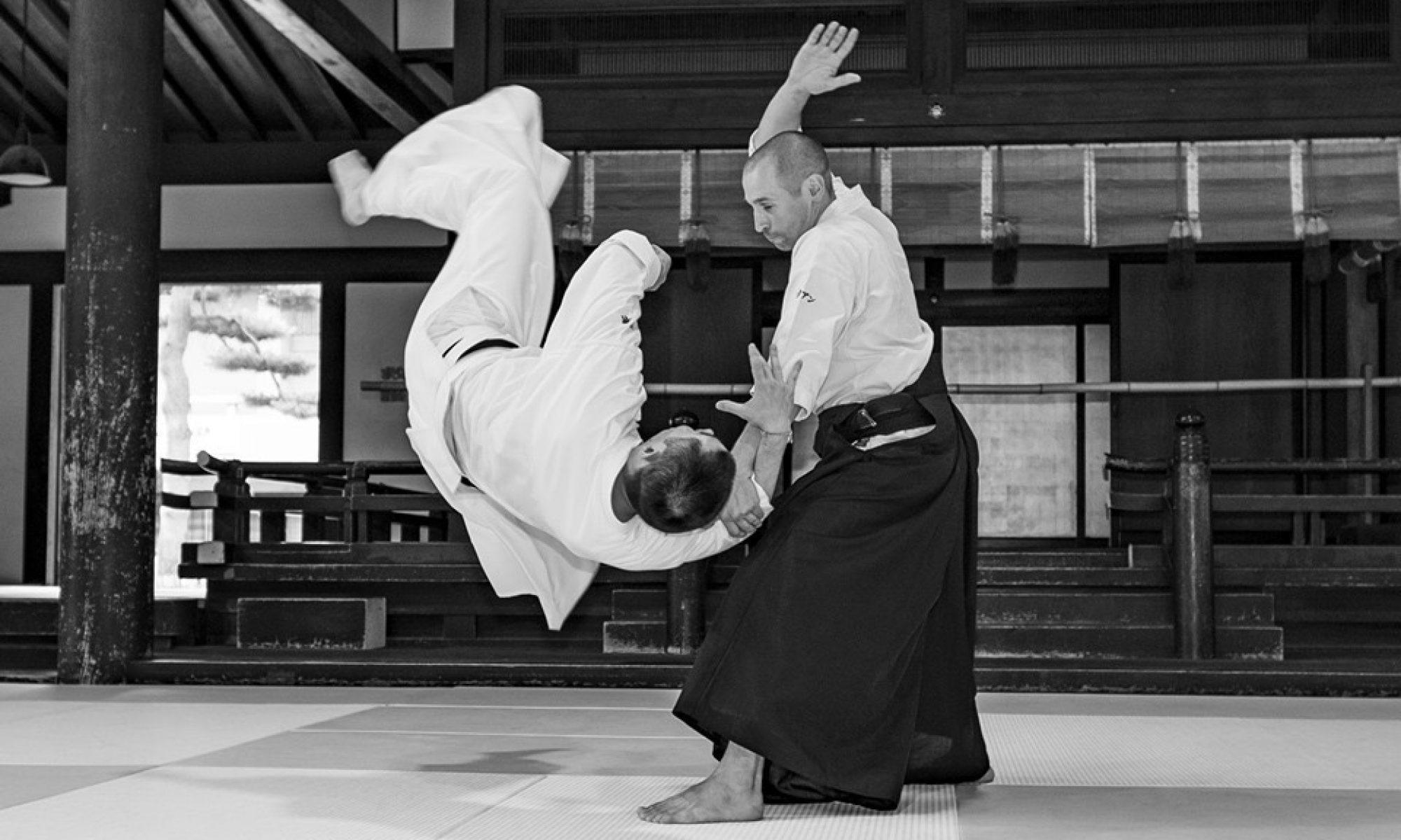Nuit des arts martiaux traditionnels